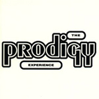 prodigy: Experience