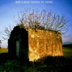 joe lally: There To Here