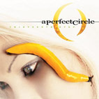 a perfect circle: Thirteenth Step