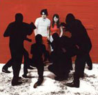 white stripes: White Blood Cells