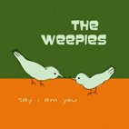 the weepies: Say I Am You
