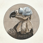 protest the hero: Volition