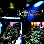 David Torn: What Means Solid, Traveller?