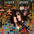 siouxsie and the banshees: A Kiss In The Dreamhouse