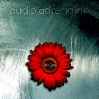 audio adrenaline: Bloom