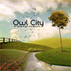 owl city: All Things Bright And Beautiful