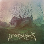 woods of ypres: Home [Single]