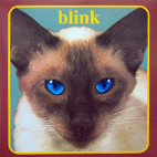 blink 182: Cheshire Cat