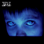 porcupine tree: Fear Of A Blank Planet