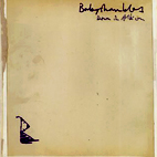 babyshambles: Down In Albion