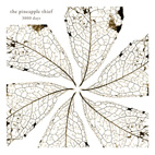 The Pineapple Thief: 3000 Days