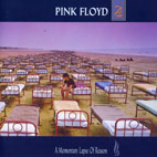 pink floyd: A Momentary Lapse Of Reason