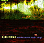 buckethead: A Real Diamond In The Rough
