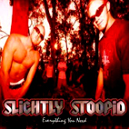 slightly stoopid: Everything You Need