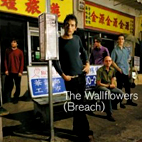wallflowers: Breach