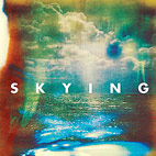 the horrors: Skying