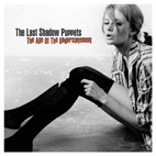 the last shadow puppets: Age Of The Understatement