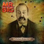 mr big: ...The Stories We Could Tell