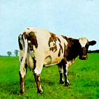 pink floyd: Atom Heart Mother