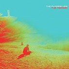 flaming lips: The Terror