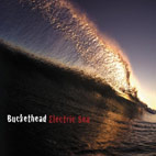 buckethead: Electric Sea