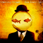 counting crows: This Desert Life
