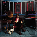 Julian Casablancas: Phrazes For The Young