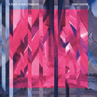a place to bury strangers: Transfixiation