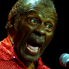 chuck berry: Belgium (Antwerp), November 15, 2007