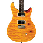 Paul Reed Smith: SE Custom 24 25th Anniversary