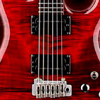 Carvin: DC200