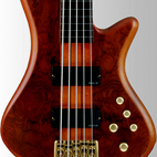 Schecter: Stiletto Studio-5