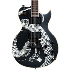Artist Series Guitar: Limited Edition Series