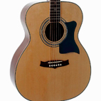Tanglewood: TW170 AS