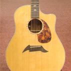 Breedlove: Performance Focus D