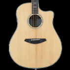 Breedlove: Stage Dreadnought