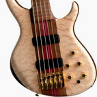 Tobias: Signature 5-String Bass