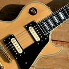 Burny: Les Paul Custom