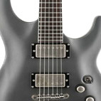 Schecter: C-1 Lady Luck