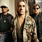 The Stooges Recording New Album Without Iggy Pop