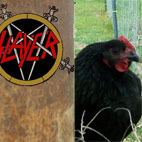 These Alternate Metal Covers Are Too Punny to Miss