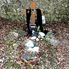 Gary Moore's Grave In Sorry State