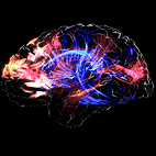 Scientists Can Manipulate Your Brain Into Liking Certain Music Genre, Study Reveals