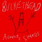 Buckethead: Acoustic Shards