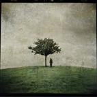 Ana Kefr: The Burial Tree II