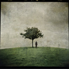 The Burial Tree II