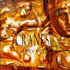 Cranes: Forever