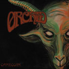 Orchid: Capricorn