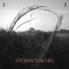 frnkiero and the cellabration: Stomachaches