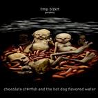 Limp Bizkit: Chocolate Starfish And The Hot Dog Flavored Water